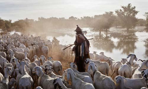 Оформить страховку для поездки в Мали самостоятельно