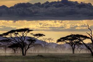 Забронировать отель в Танзанию