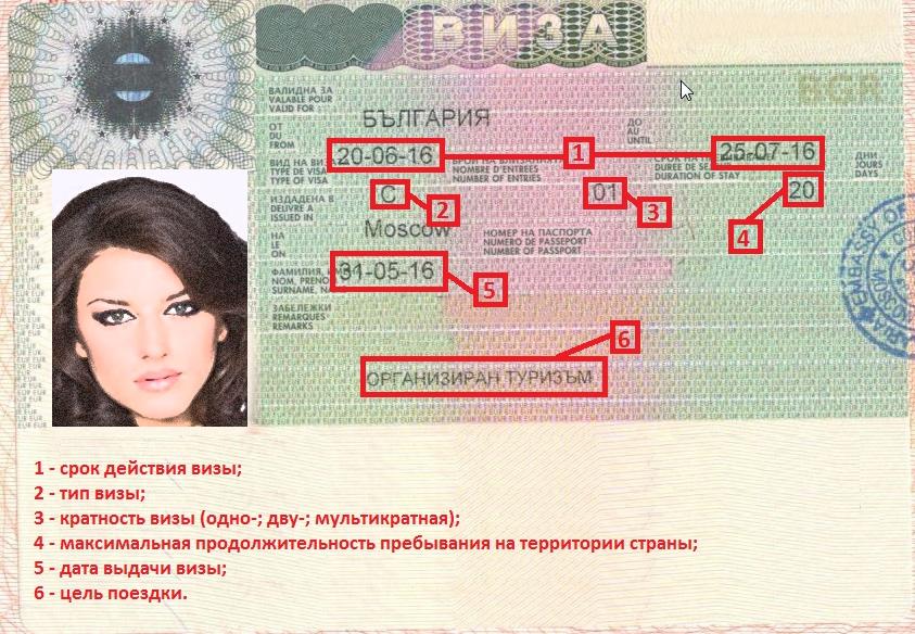 Читаем болгарскую визу